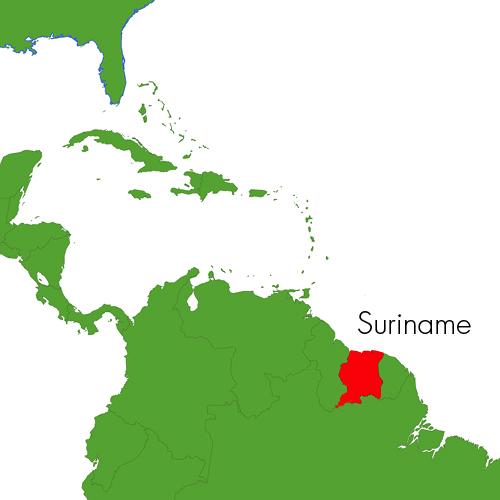 Amazone resources about us amazone resources is located in paramaribo the capital of suriname this smallest country in south america is the greenest country on earth publicscrutiny Gallery